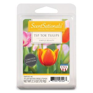Tip Toe Tulips