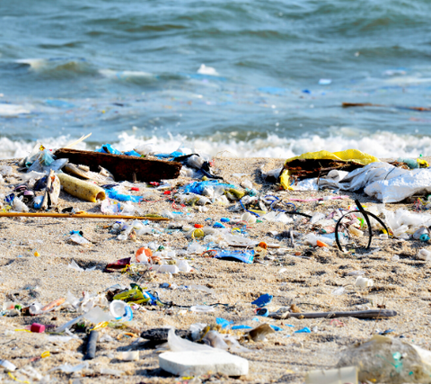Image of a beach polluted with throwaway plastic bottles and other plastic debris.