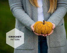 Load image into Gallery viewer, Pumpkin Decor: CROCHET PATTERN
