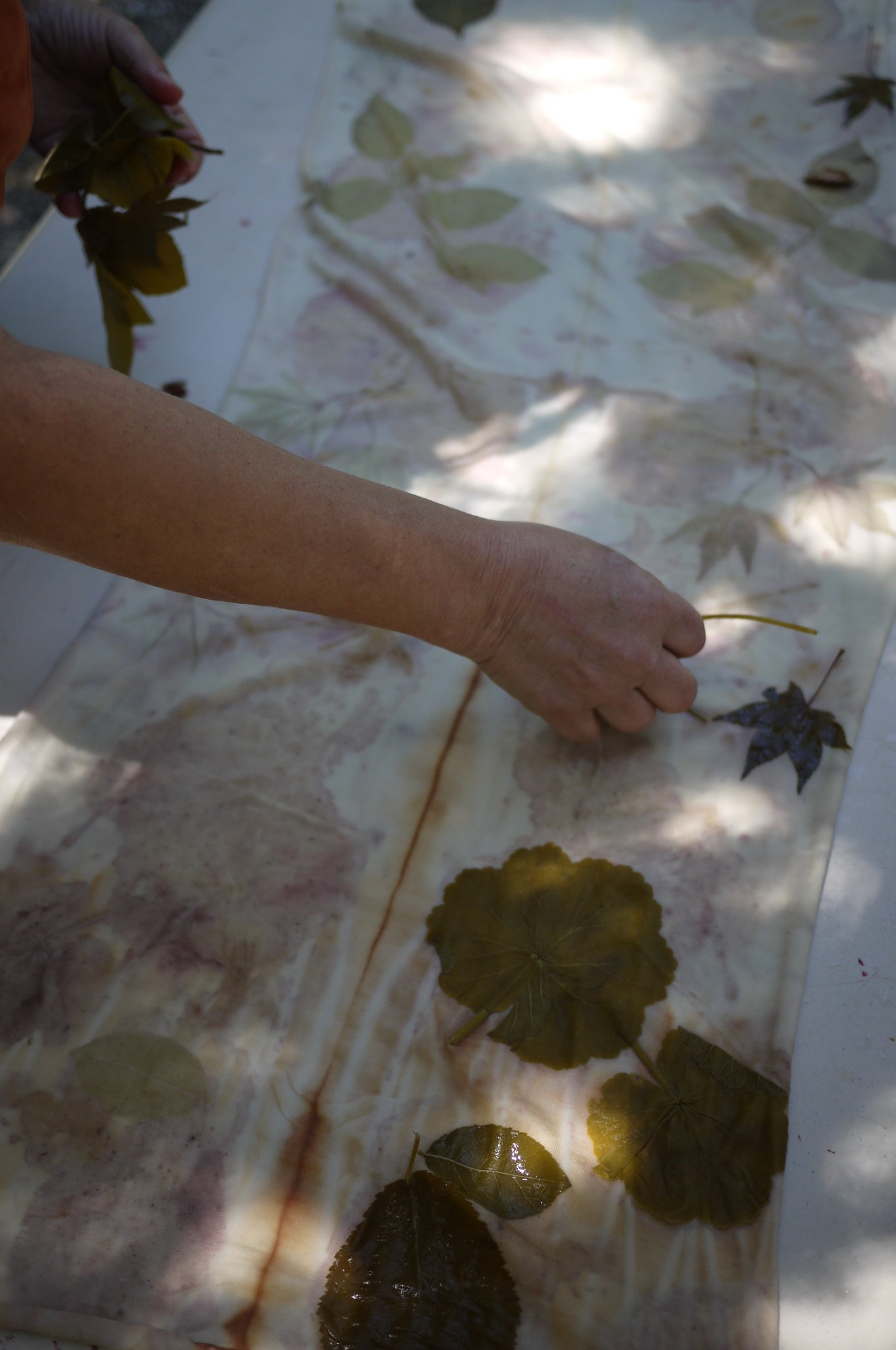 Eco Printing at West County Fiber Arts