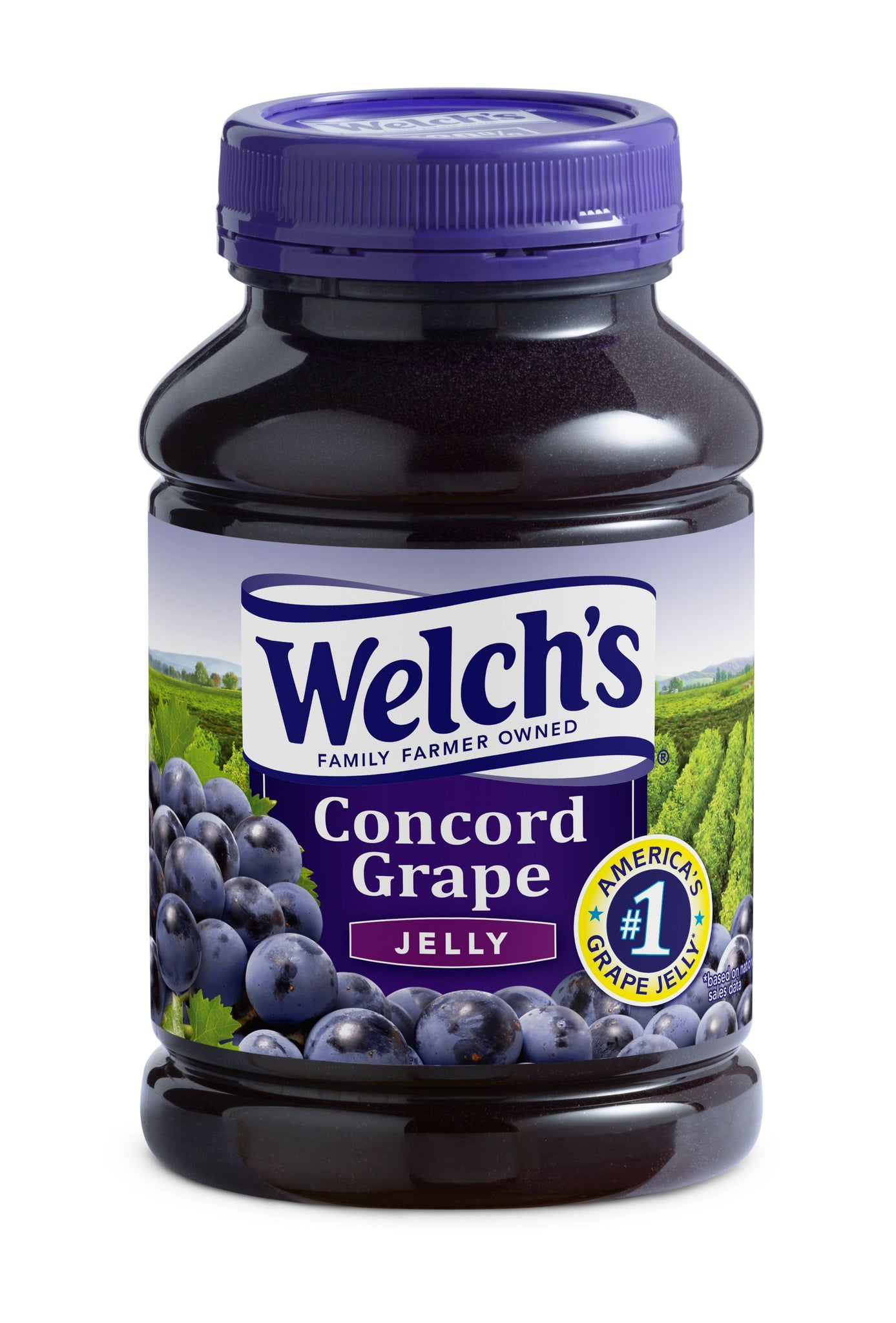 stl>Welch's Grape Jelly - 30oz