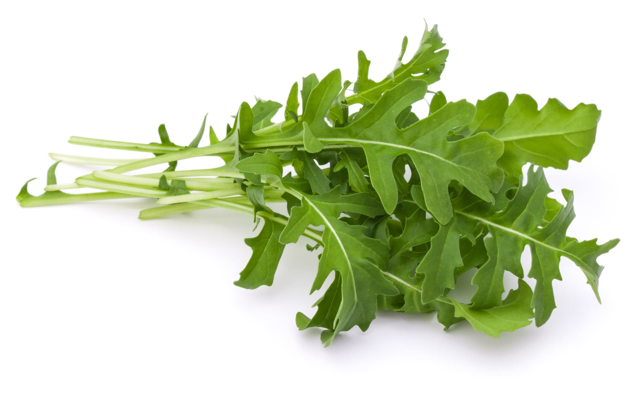aga>Rucola leaves
