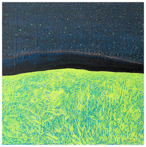 Painting | Starry Night Mount Gable Lough Corrib by Orfhlaith Egan | A Soft Day