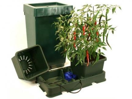Kit Autopot Easy2Grow 4 Vasi