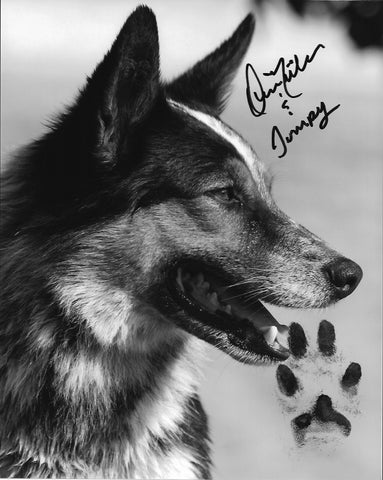 Jumpy's Pawtographed (1) 8X10 Black and white
