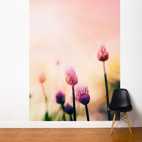 ADzif Fresk Candy Pink 6ft x 8ft