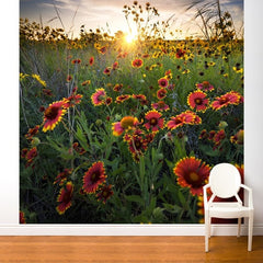 ADzif Fresk Flower at Sunrise 8ft x 8ft