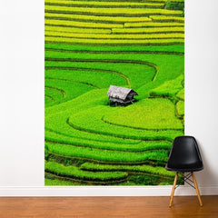 ADzif Fresk Rice Field 6ft x 8ft