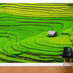 ADzif Fresk Rice Field 10ft x 8ft