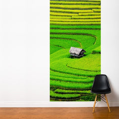 ADzif Fresk Rice Field 4ft x 8ft