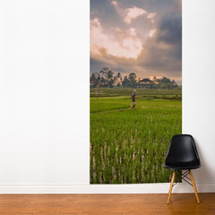 ADzif Fresk Bali Rice Field 4ft x 8ft