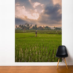 ADzif Fresk Bali Rice Field 6ft x 8ft