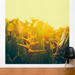 ADzif Fresk Exotic Gold 10ft x 8ft