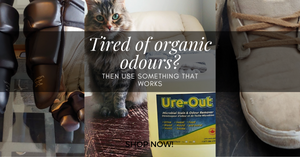getting rid of the smell of cat urine