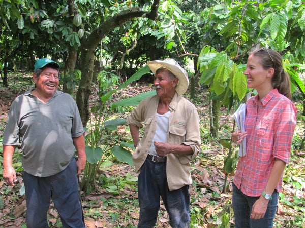 farmers and chocolate makers in the cacao farm plantation