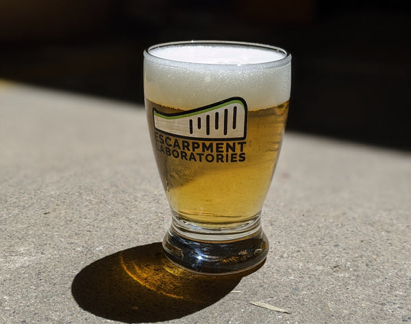 Image of clear beer in Escarpment Labs beer glass
