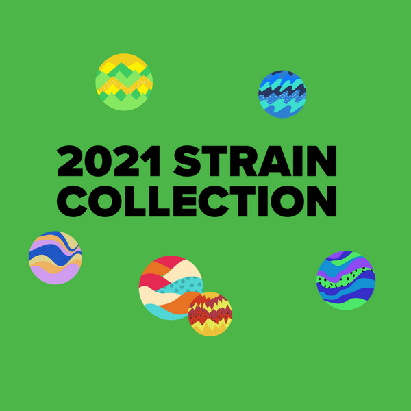 2021 Strain Collection Poster - PDF available!