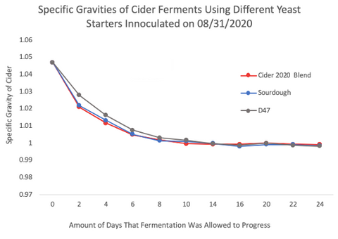 Plot of specific gravity over time in the cider fermentations