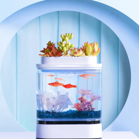 aquarium with goldfish and a planter on top