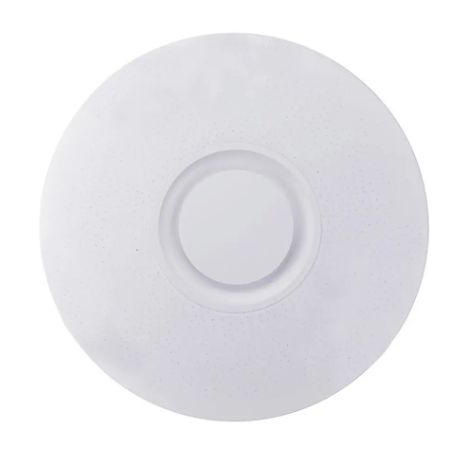LiteLyric™ bluetooth Speaker Ceiling Light Fixture