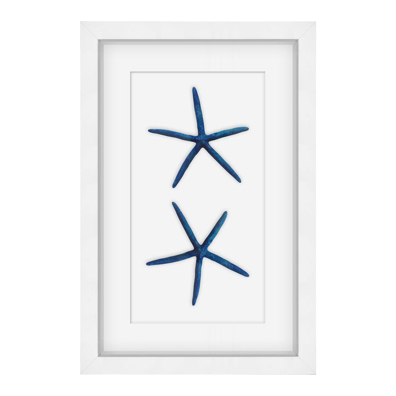 Barclay Butera Starfish (Large) by shopbarclaybutera