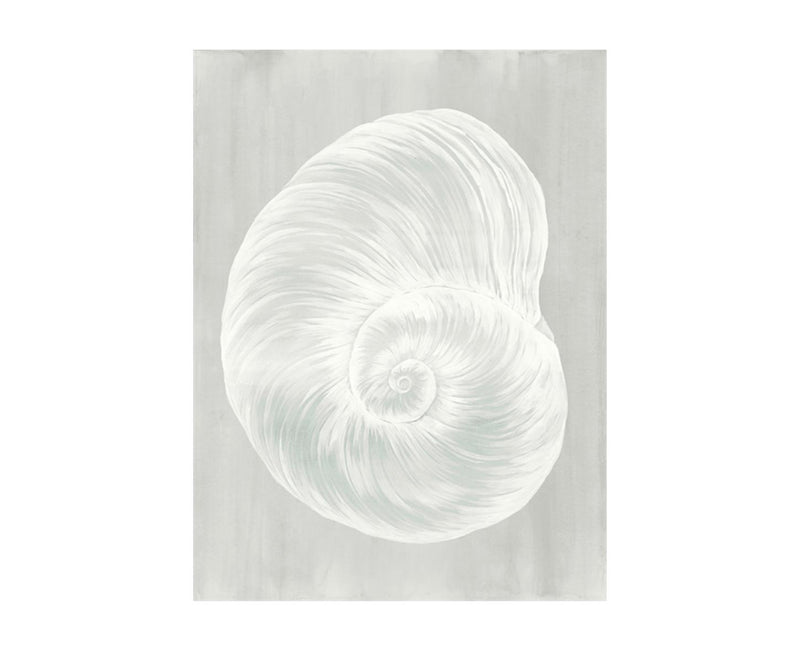Sound of Shell VI by shopbarclaybutera