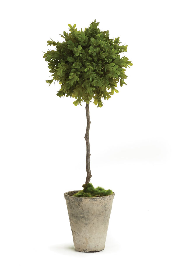 Faux Boxwood Topiary Potted design by shopbarclaybutera