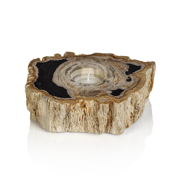Fortaleza Petrified Wood Tealight Holder by Panorama City