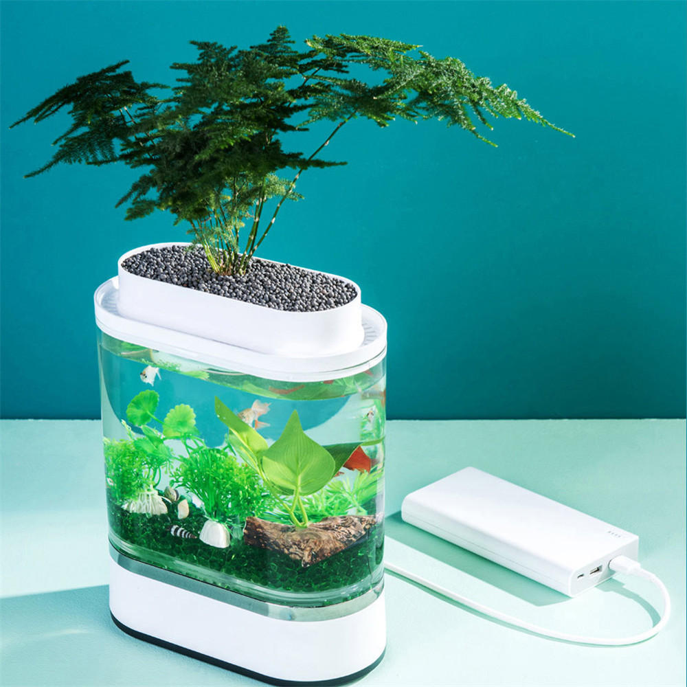 USB Powered Desktop Garden Aquarium, 1/2 gallon volume