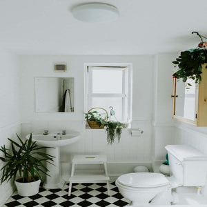 Handy Tips for a Mould Free Bathroom