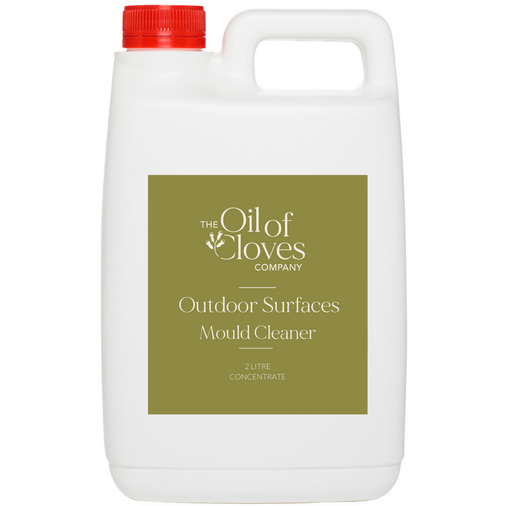 Outdoor Surfaces Mould Cleaner