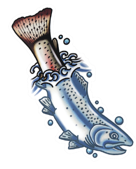 Diving Trout Sticker - Drew Wilson