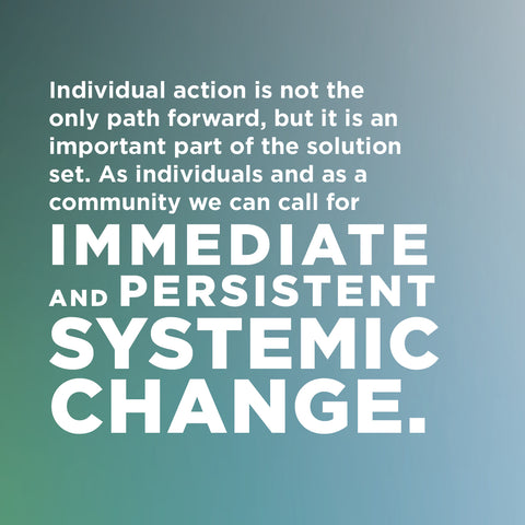 An image with a light green background reads: Individual action is not the only path forward, but it is an important part of the solution set. As individuals and as a community we can call for IMMEDIATE and PERSISTENT SYSTEMIC CHANGE.