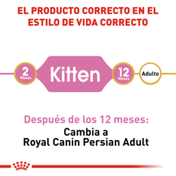 Royal Canin Felino Persian Kitten - Cani Delights