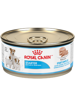 Royal Canin Starter Mousse Lata - Cani Delights