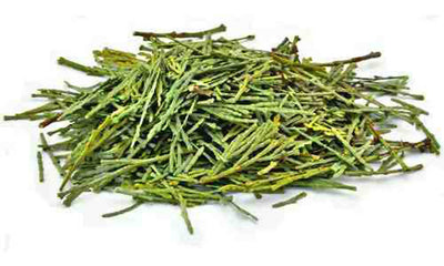 Cedar Leaves & Clusters - 1 Pound