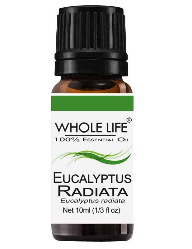 100% Pure Eucaluptus Radiata Essential Oil - Eucalyptus radiata | 10ml