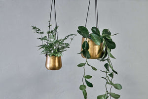 Atsu Brass Hanging Planter