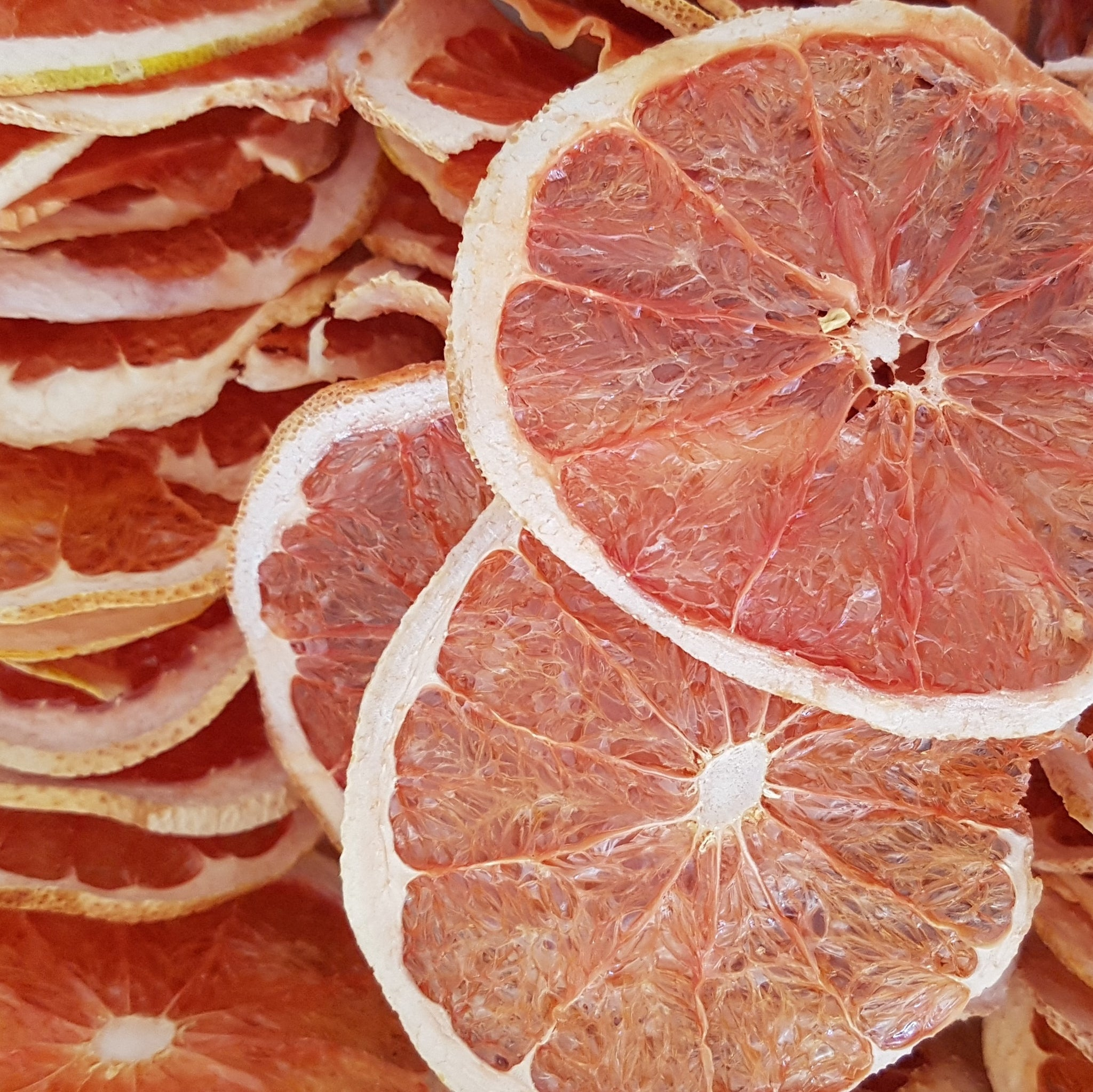 Dried Grapefruit, Gin Garnish, Ginny Pig Distillery