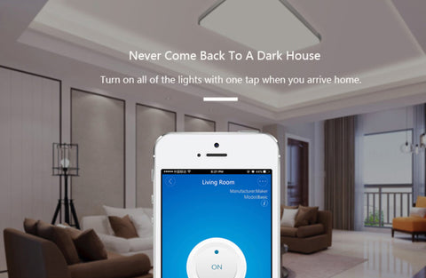"""alt="""" control your home lights SONOFF WIFI Wireless Smart Switch Remote Control Socket with Timer App Amazon Alexa Echo Tap Google Home Assistant Nest IFTTT Support"""""""
