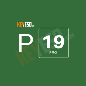 Microsoft Project 2019 Professional Key Esd [Global] - keyesd