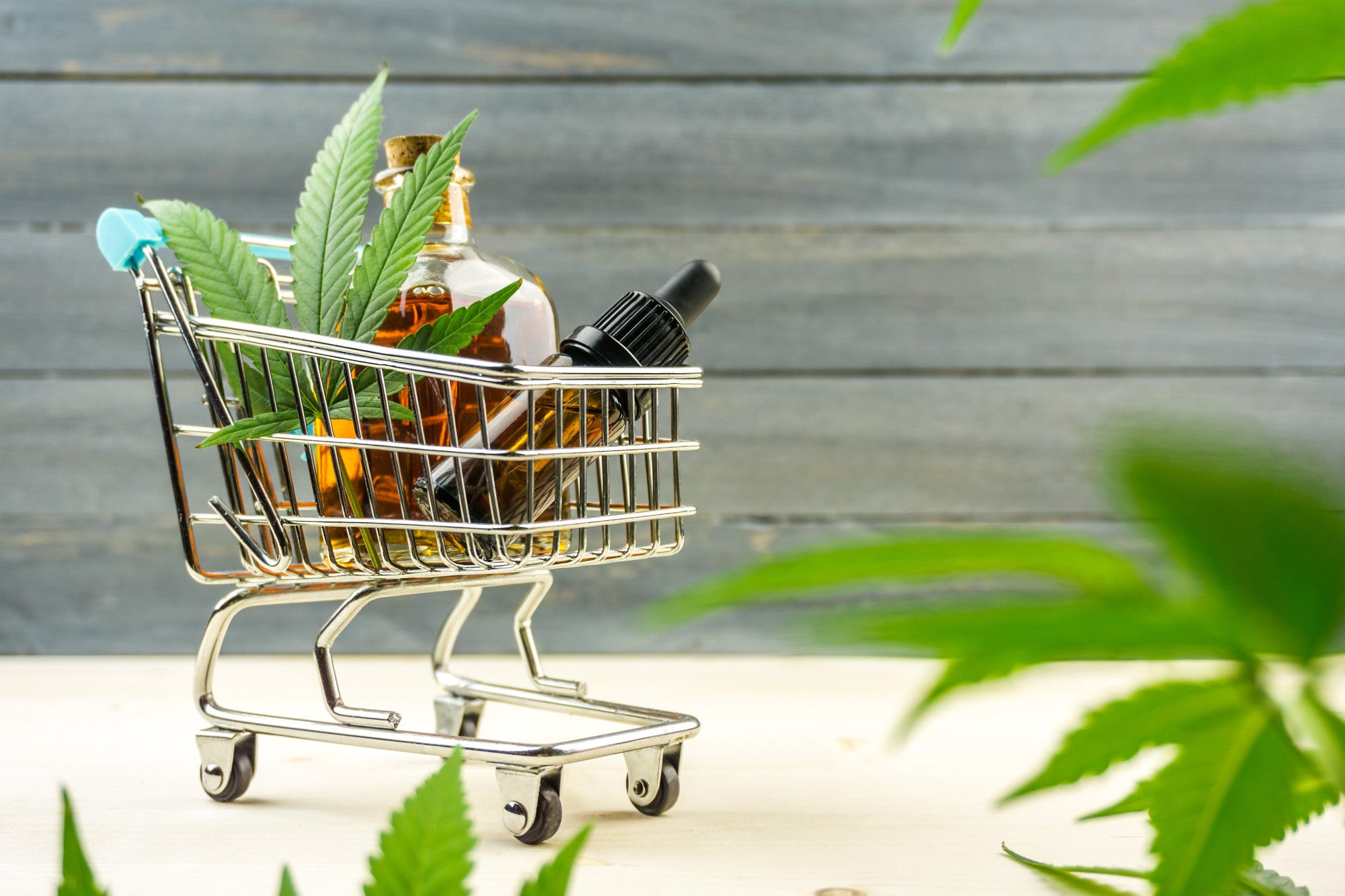 5 Things to Consider When Ordering From an Online CBD Supplier