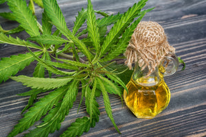 CBD Lotion: 7 Amazing Reasons to Use CBD Oil for Skin Care