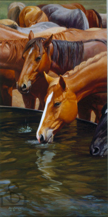 """Drinkin Buddies"" by Steve Devenyns, famous American Western fine artist. Available in Standard Print or Canvas Transfer. Featured in Cheyenne Frontier Days Governor's Art Show, Old West Museum, America's Horse in Art Show. Original Paintings of Ranching, Wildlife and Cowboy true depictions of the American Cowboy."