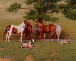 """Maternity Ward"" by Steve Devenyns is a 36"" x 48"" Original Oil Painting featuring several mares looking over their colts.. His Award winning art has been featured in the Buffalo Bill Art Show, Quest for the West Art Show, National Museum of Wildlife Art, Cheyenne Frontier Days Governor's Art Show and America's Horse in Art Show."