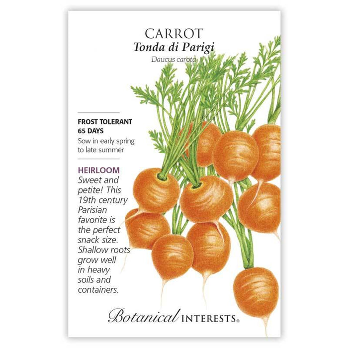 Botanical interests, Carrot, Tonda di Parigi