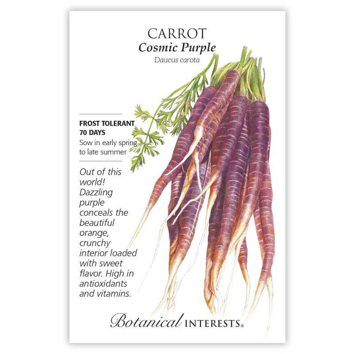 Botanical interests, Carrot, Cosmic Purple Carrot Seeds