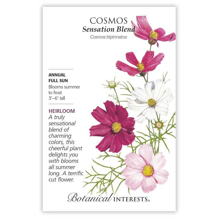 Botanical Interests, Cosmos Sensation Blend Organic, Heirloom