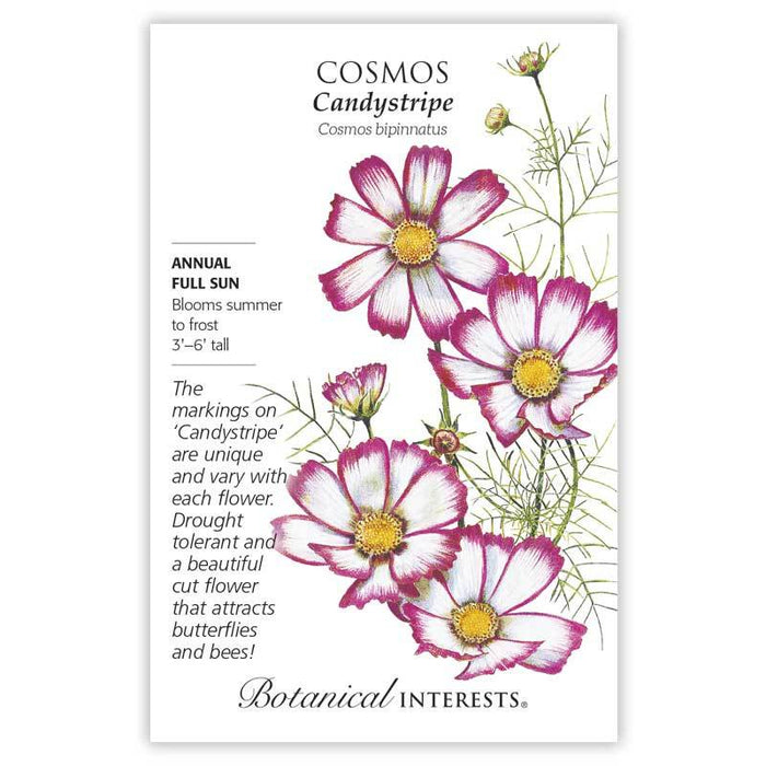 Botanical Interests, Cosmos Candystripe Seeds
