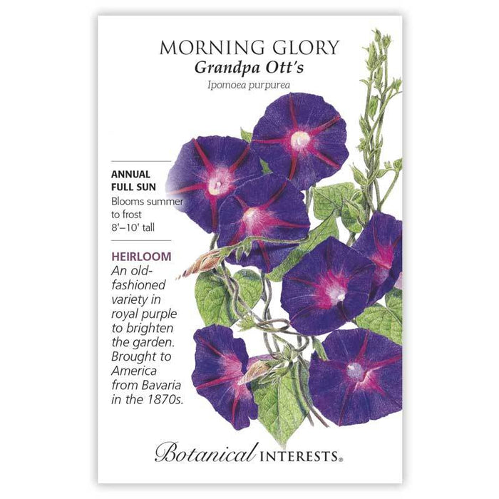 Botanical Interests, Morning Glory Grandpa Ott's  Heirloom Seeds Heirloom
